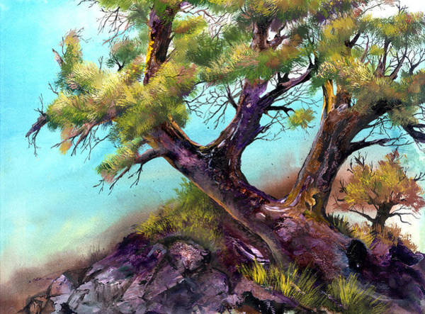 Painting - The Climbing Tree by Sherry Shipley