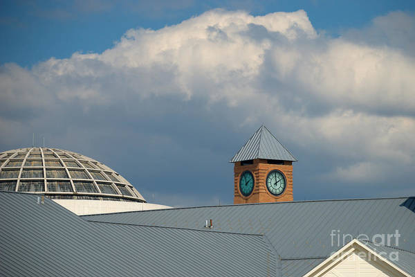 Photograph - The Clock And The Dome by Mark Dodd