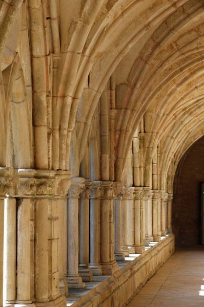 Vertical Perspective Photograph - The Cloister, The Cistercian Abbey Of by Godong / Robertharding