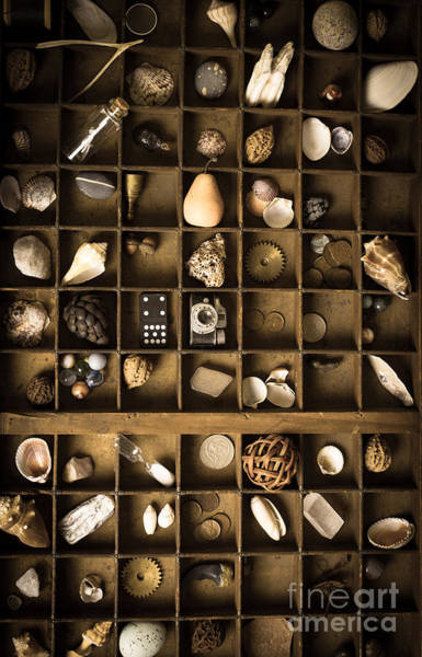 Drawers Photograph - The Collection by Edward Fielding