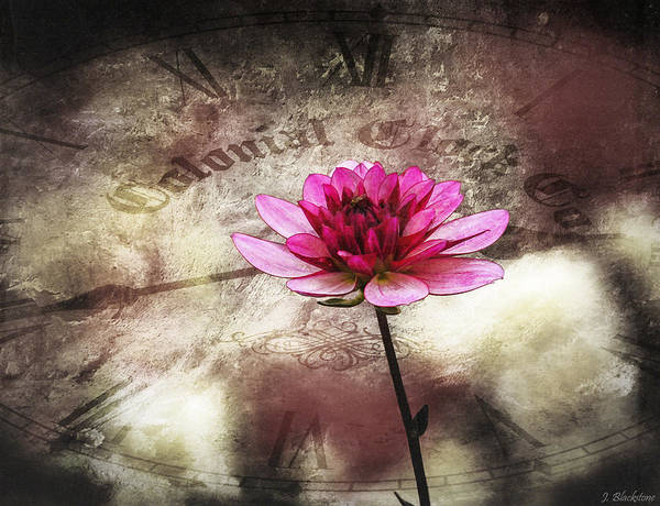 Photograph - The Color Of Springtime - Vintage Art By Jordan Blackstone by Jordan Blackstone