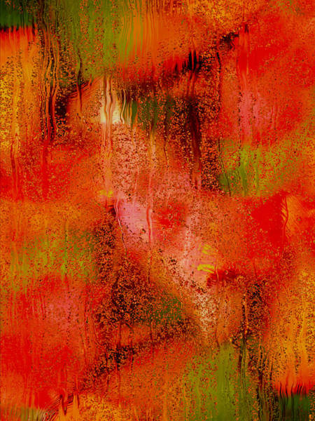 Photograph - The Colors Of Autumn Abstract by Denise Beverly