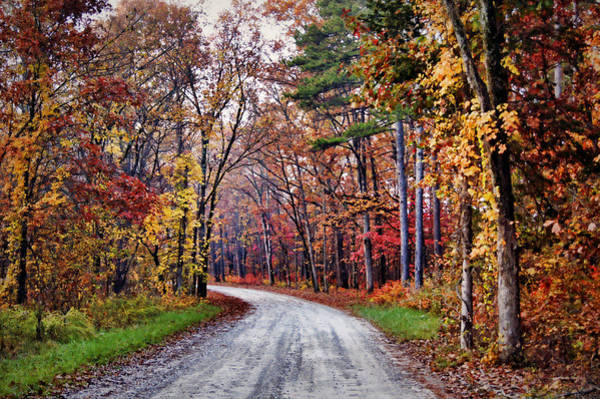 Photograph - The Colors Of Fall by Cricket Hackmann