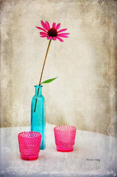 Photograph - The Coneflower by Randi Grace Nilsberg