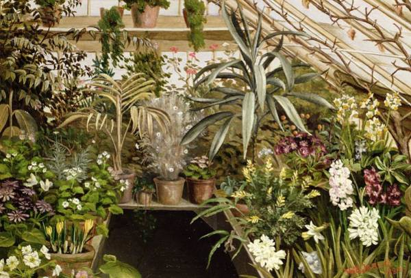 Wall Art - Painting - The Conservatory by WC Jarvis