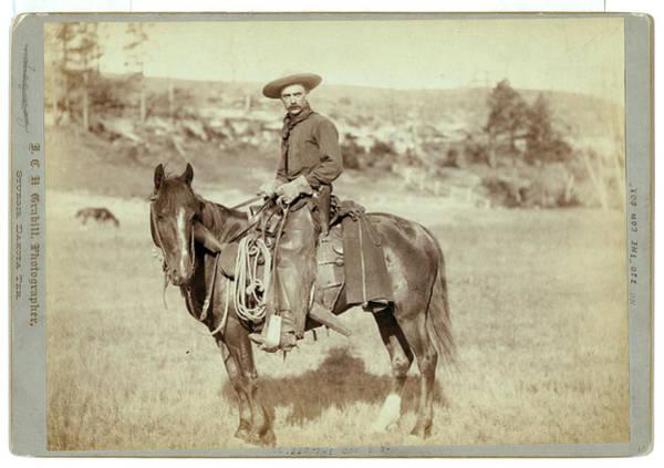 Wall Art - Photograph - The Cow Boy, John C. H. Grabill Was An American Photographer by Litz Collection