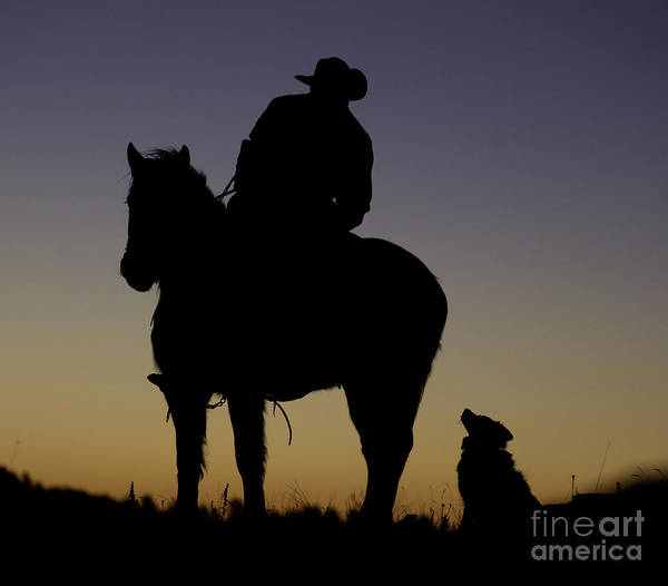 Dog Walker Photograph - The Cowboy And His Dog by Carol Walker