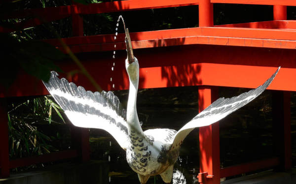 Photograph - The Crane Fountain by Tim Ernst