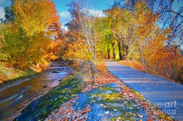 Photograph - The Creek And The Path by Tara Turner