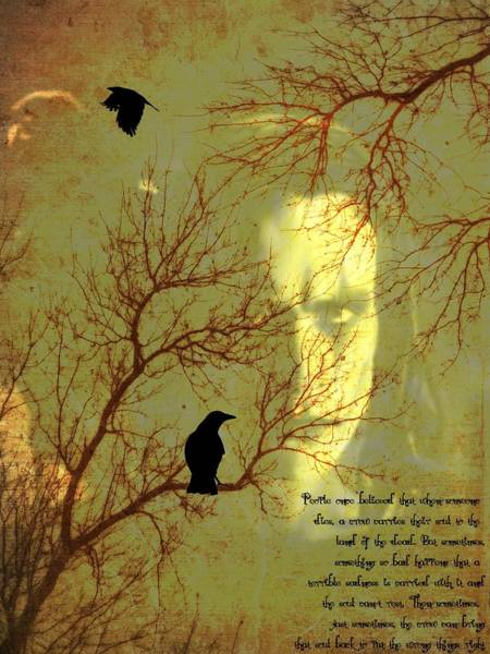 Mixed Media - The Crow by Dan Sproul