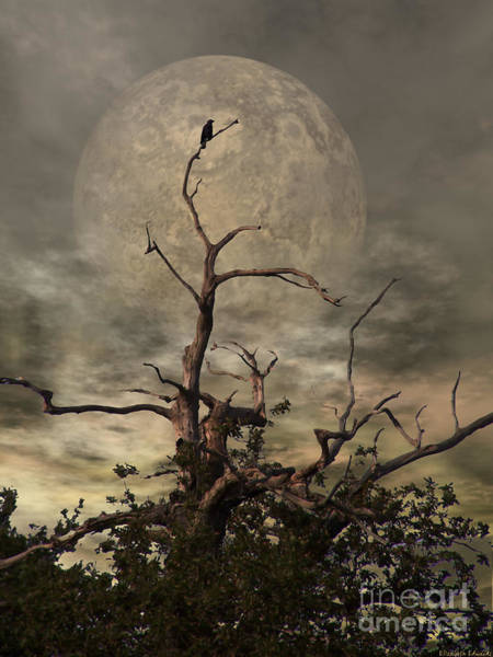 Full Moon Wall Art - Digital Art - The Crow Tree by Abbie Shores