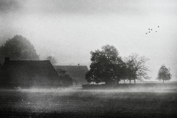 Mist Photograph - The Crowing Of The Rooster by Piet Flour