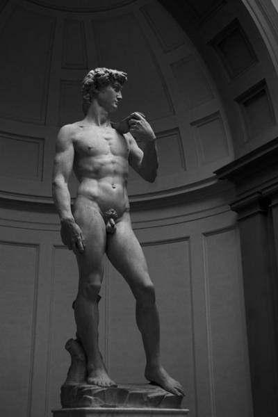 Photograph - The David by Michael Kirk