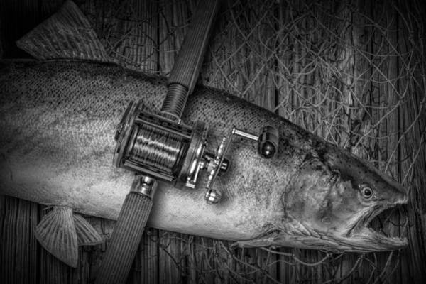 Chinook Salmon Photograph - The Day's Catch by Randall Nyhof
