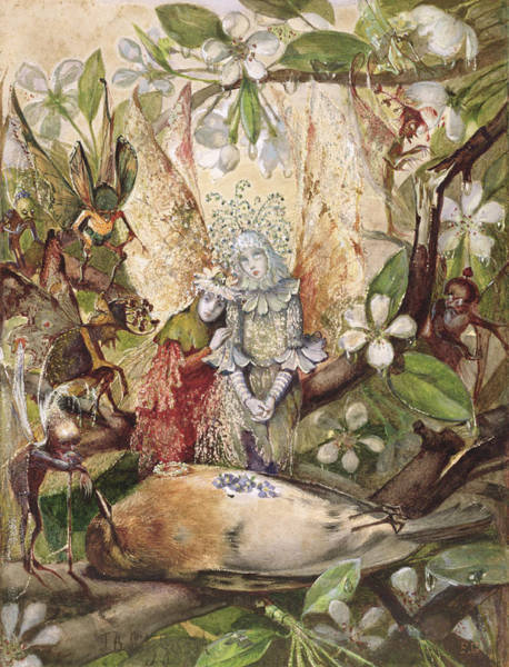 Breast Drawing - The Death Of Cock Robin by John Anster Fitzgerald