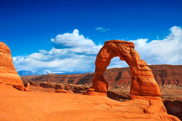 Photograph - The Delicate Arch by Darren Bradley