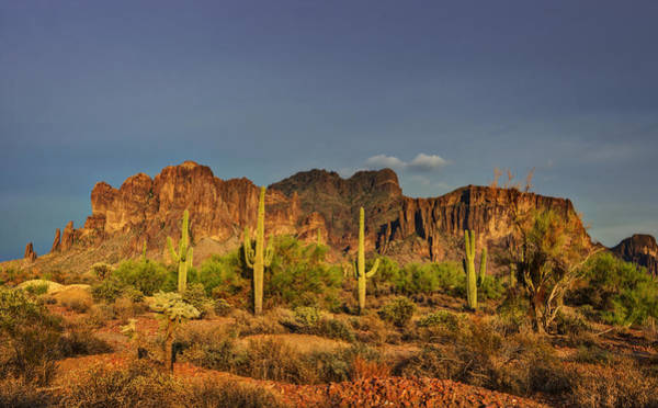 Superstition Mountains Photograph - The Desert Aglow by Saija  Lehtonen