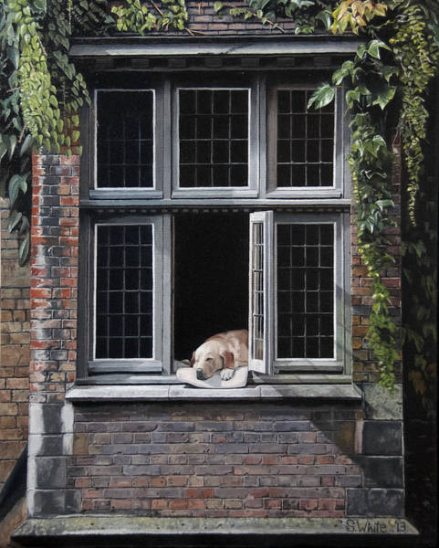 Windows Wall Art - Painting - The Dog Of Bruges by Scot White