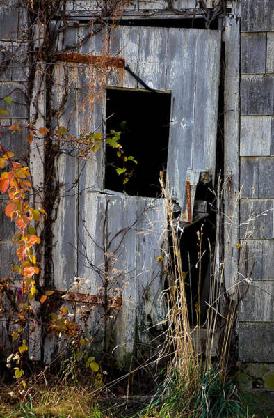 Photograph - The Door by William Jobes