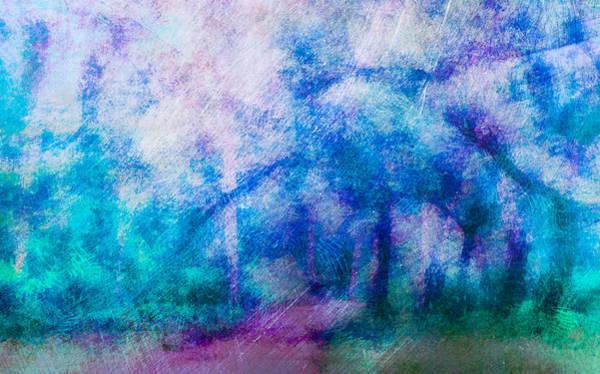 Digital Art - The Doorway In The Dappled Forest by Priya Ghose