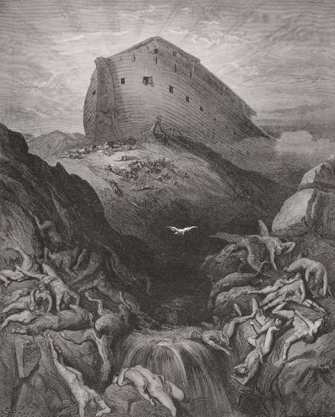 Noah Wall Art - Drawing - The Dove Sent Forth From The Ark, Genesis 138-9, Illustration From Dores The Holy Bible, 1866 by Gustave Dore