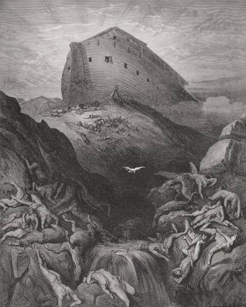 Noah Wall Art - Painting - The Dove Sent Forth From The Ark by Gustave Dore