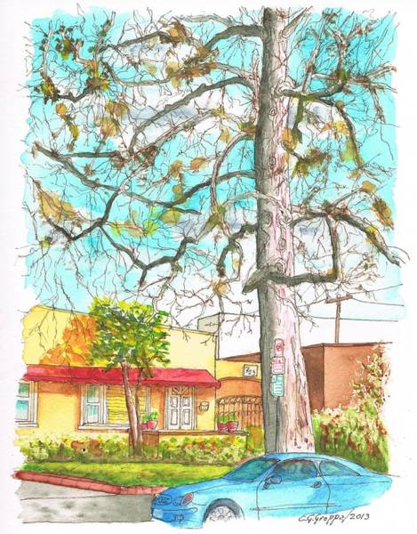 Acuarela Painting - The Dry Tree In The Yellow House - Hollywood - California by Carlos G Groppa