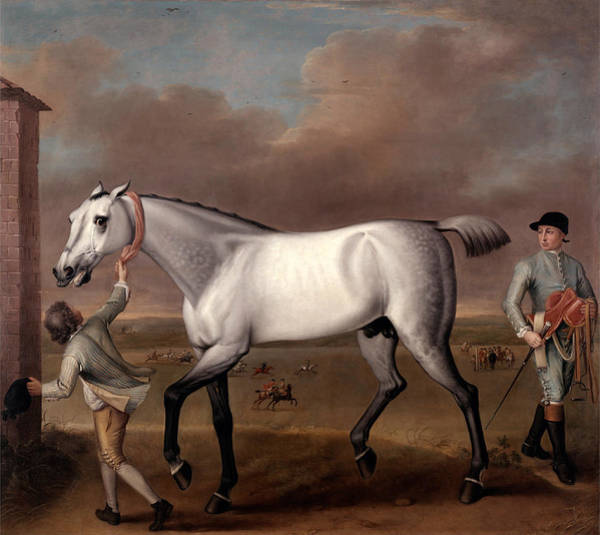 Victorious Painting - The Duke Of Hamiltons Grey Racehorse Victorious At Newmarket by John Wootton
