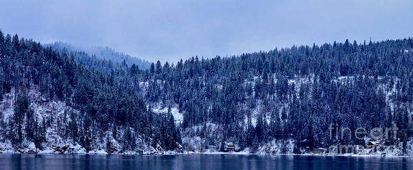 Patzer Photograph - The Dusting by Greg Patzer