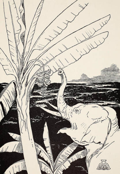 African Animal Drawing - The Elephant's Child Going To Pull Bananas Off A Banana-tree by Joseph Rudyard Kipling