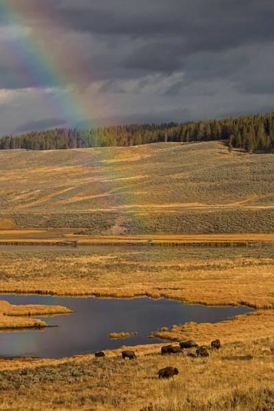 Wall Art - Photograph - The End Of The Rainbow by Sandy Sisti