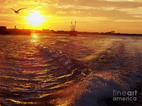 Canon Rebel Photograph - The End To A Fishing Day by John Telfer