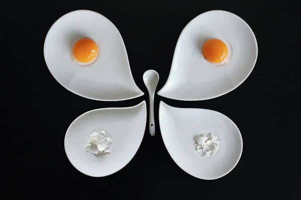 Egg Photograph - The Entomologist's Breakfast by Victoria Ivanova
