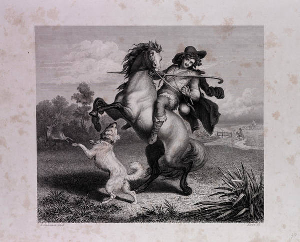 Reynard Wall Art - Drawing - The Envious Horse by English School