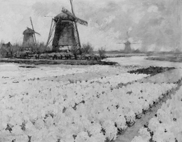 Dutch Tulip Painting - The Epitome Of Holland by Bill Cannon
