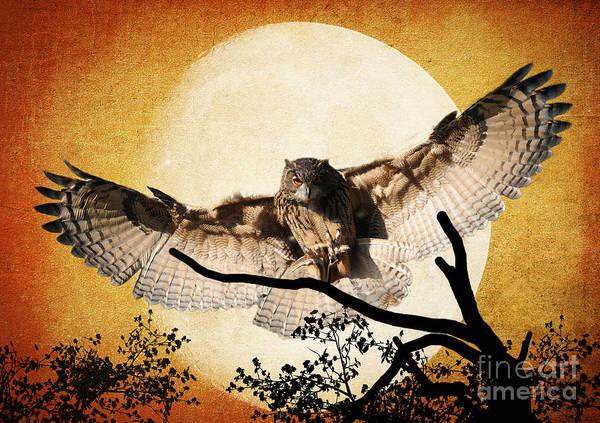 Avian Wall Art - Photograph - The Eurasian Eagle Owl And The Moon by Kathy Baccari