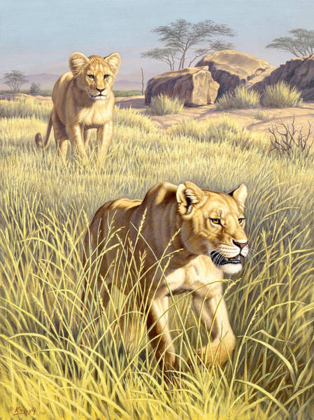 Cub Painting - The Example   by Paul Krapf