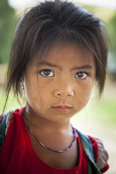 Photograph - The Eyes Have It by Jo Ann Tomaselli