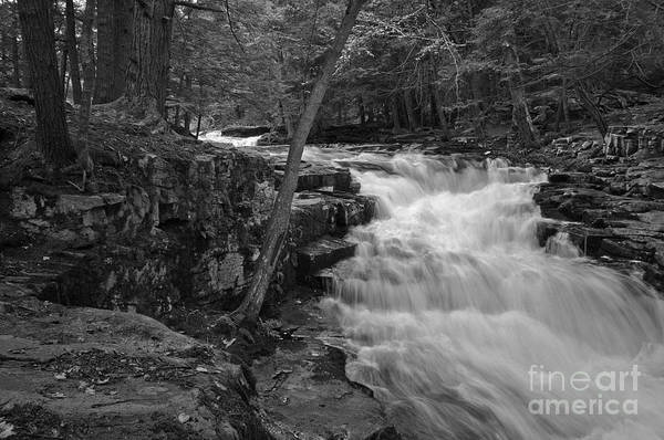 Poconos Wall Art - Photograph - The Falls by David Rucker