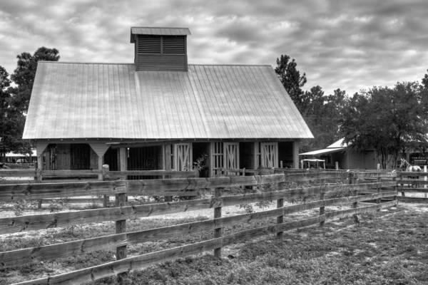 Photograph - The Farm by Dawn Currie