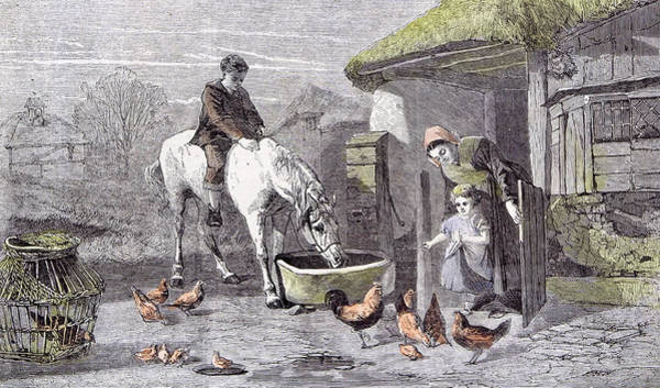 Crumble Drawing - The Farmhouse Porch Walter Goodall Children Horse Chicken by English School