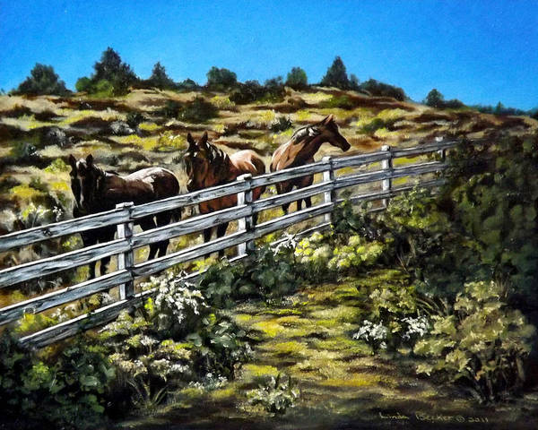 Painting - The Fence by Linda Becker