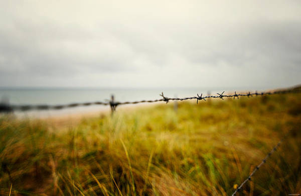 Photograph - The Fence by Ryan Wyckoff