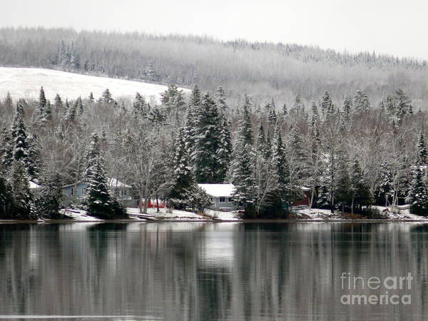 Wall Art - Photograph - The First Snow by Brenda Ketch