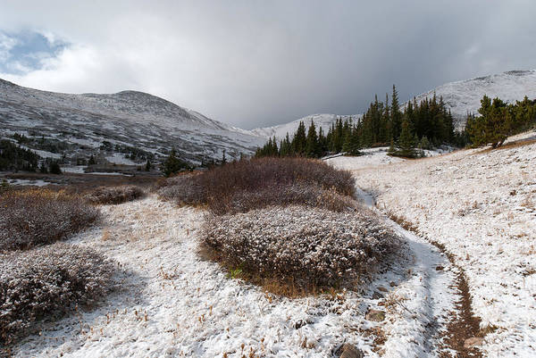 Photograph - The First Snowfall by Cascade Colors