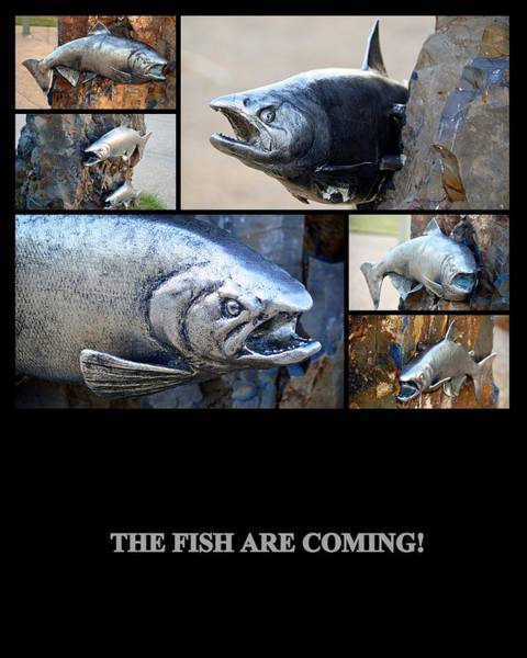 Photograph - The Fish Are Coming by AJ  Schibig