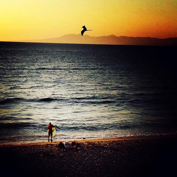 Photograph - The Fisherman And His Shadow by Natasha Marco