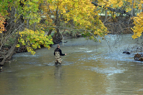 Photograph - The Fly Fisherman by Kay Novy