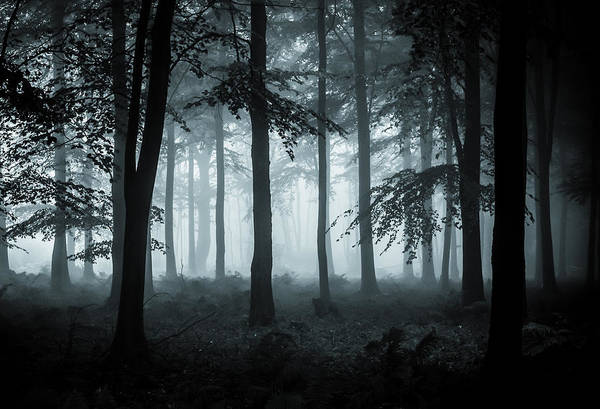 Halloween Photograph - The Fog by Ian Hufton