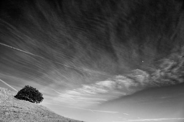 Santa Rosa Photograph - The Fool On The Hill by Peter Tellone
